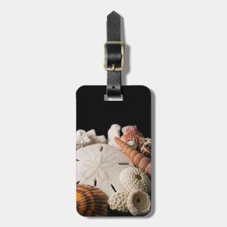 Detalle de Seashells de alrededor del mundo Etiqueta Para Equipaje