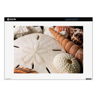 Detalle de Seashells de alrededor del mundo Portátil 38,1cm Skin