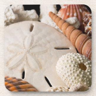 Detalle de Seashells de alrededor del mundo Posavaso