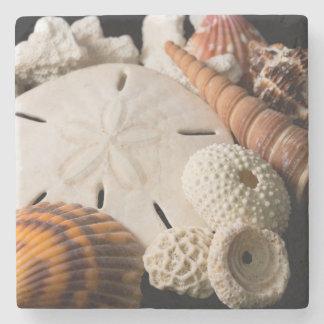 Detalle de Seashells de alrededor del mundo Posavasos De Piedra