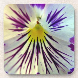 Detalle de venas en flor púrpura posavasos de bebida