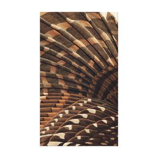 Detalle del ala de Brown Impresión En Lienzo Estirada