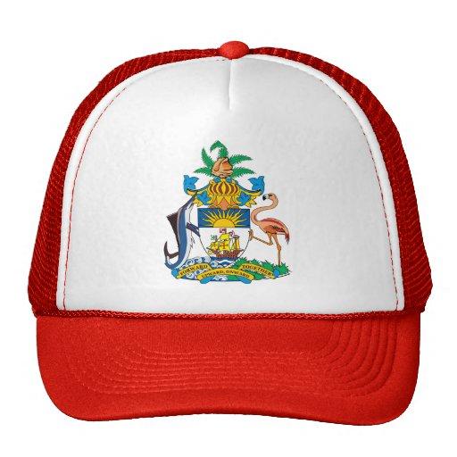 Detalle del escudo de armas de Bahamas Gorro