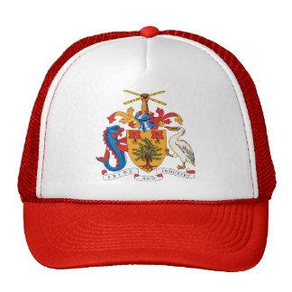 Detalle del escudo de armas de Barbados Gorra