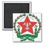 Detalle del escudo de armas del Minas Gerais del Imán Cuadrado