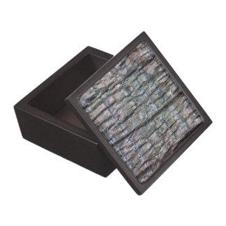 Detalle del tronco de palmera caja de recuerdo de calidad