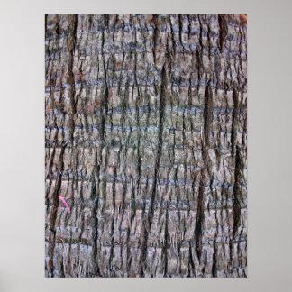 Detalle del tronco de palmera impresiones