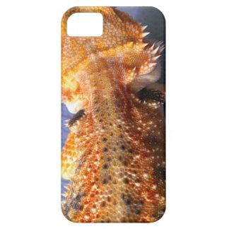 Detalle tirado de un dragón barbudo funda para iPhone SE/5/5s
