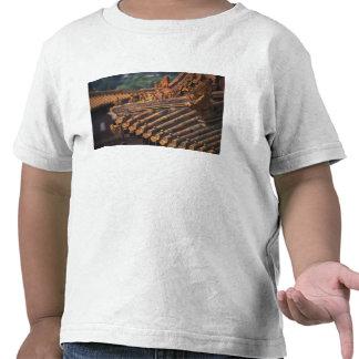 Detalles arquitectónicos en la ciudad Prohibida, Camisetas