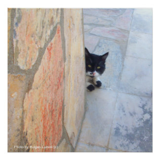 DETECTIVE CAT BEHIND THE STONE WALL / Father's Day Poster