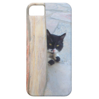 DETECTIVE CAT BEHIND THE STONE WALL iPhone SE/5/5s CASE