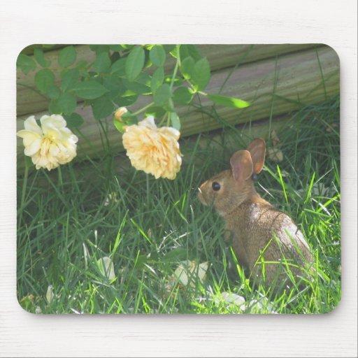 Detención para oler los rosas tapetes de ratón