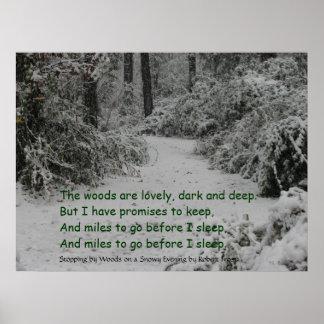 Detención por la nieve de maderas impresiones