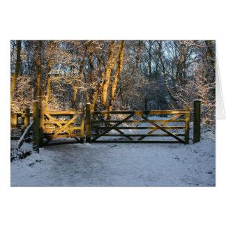 Detención por las maderas en una tarde Nevado Tarjetón