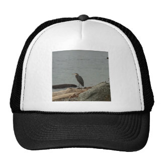 Determinación de los Egrets Gorros Bordados