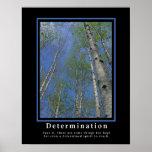 Determinación de los posters de Demotivational…