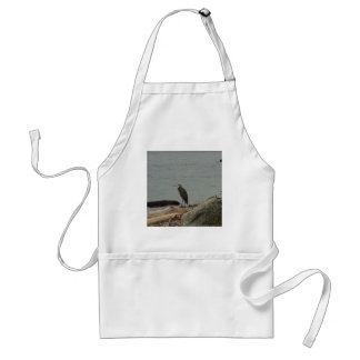 Determination of the Egrets Adult Apron