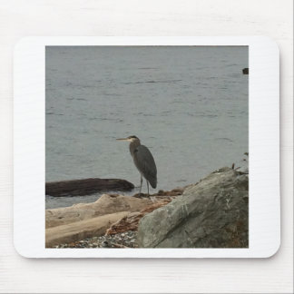 Determination of the Egrets Mouse Pad