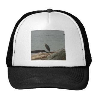 Determination of the Egrets Trucker Hat