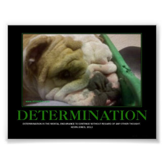 DETERMINATION POSTER! POSTER