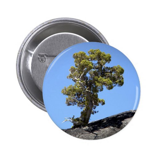 Determined Tree ~ Button