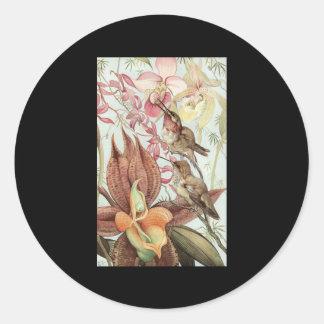 Detmold Catasetum and Cypripediums Sticker