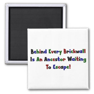 Detrás de cada Brickwall es… Imán De Nevera