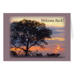 Detrás puesta del sol agradable del árbol 3748 felicitaciones