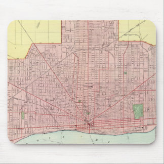 Detroit and Vicinity Mousepad