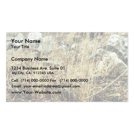 Detroit River Oil Spill Damage Double-Sided Standard Business Cards (Pack Of 100)