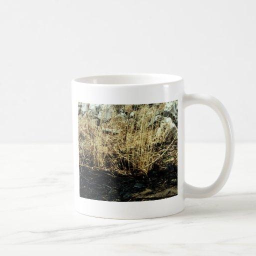 Detroit River Oil Spill Damage Mugs