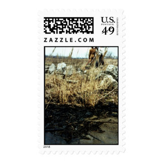 Detroit River Oil Spill Damage Postage Stamp