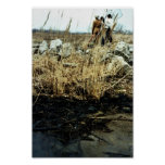 Detroit River Oil Spill Damage Poster