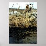Detroit River Oil Spill Damage Posters