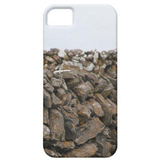 Detta Aran Stone Wall iPhone 5 Cases