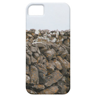 Detta Aran Stone Wall iPhone SE/5/5s Case