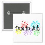 Deuda en julio pin