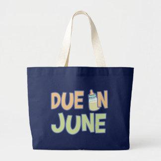 Deuda en junio bolsa tela grande