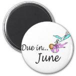 Deuda en junio iman de nevera