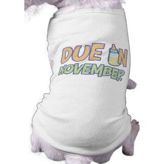 Deuda en noviembre ropa para mascota
