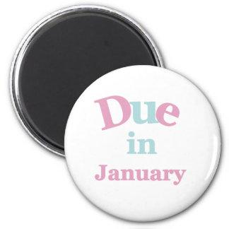 Deuda rosada en enero imán redondo 5 cm