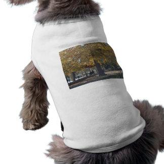 Deudo respetuoso en un banco cerca del entra de Ar Playera Sin Mangas Para Perro