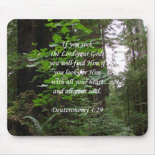 Deuteronomy 4:29 ~ Seek the Lord Mousepad