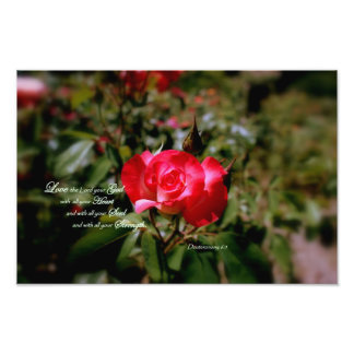 Deuteronomy 6:5  Love the Lord your God Photo Print