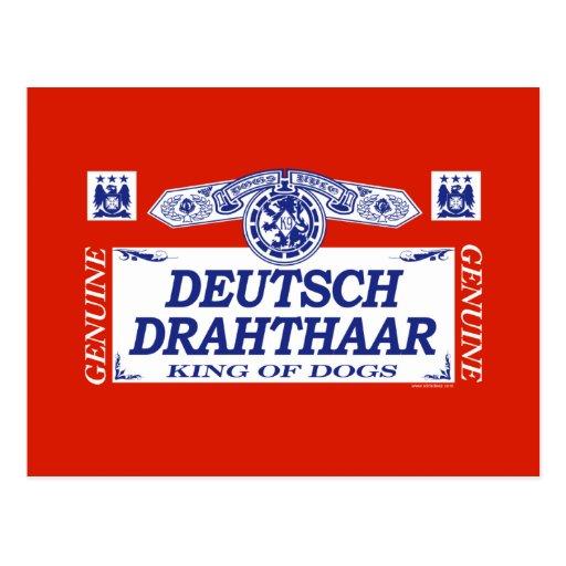 Deutsch Drahthaar Tarjetas Postales