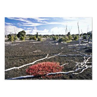 """Devastation Area - Kiluaea Crater, Hawaii 5"""" X 7"""" Invitation Card"""