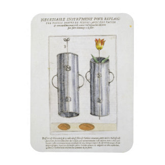 Device for re-planting flowers, from 'Hortus Flori Magnet