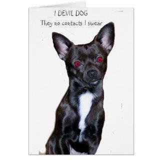devil chihuahua card