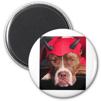 Devil Pit Magnet