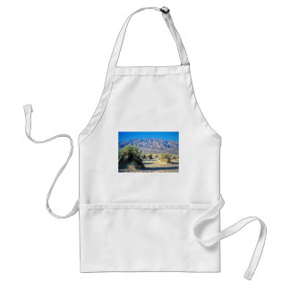 Devil's Cornfield And Panamint Mountains Aprons